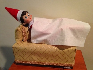 Day 2: We found Kira the Elf sleeping in the tissue box couch