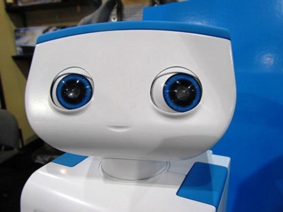 Robots, CES, ABB, Double Robotics Inc., Evollve Inc. d/b/a Ozobot, Lowe's Innovation Labs, Future Robot Co. Ltd,  Robotics Exhibits