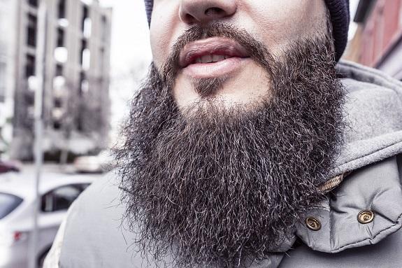 guys, beards, classic beard, style, long beard, biker beard, bushy beard