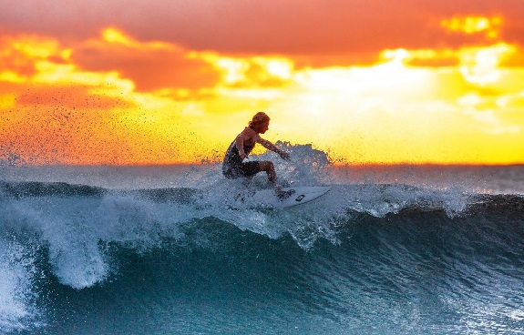 surfing, sport, world wide web, fitness, health, water sports, internet