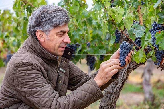 Don Melchor, wine, Viña Don Melchor, Puente Alto, 30th Anniversary Release, Winemaker, Enrique Tirado, Cabernet Sauvignon, Chile